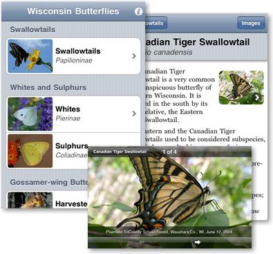 Screen shots from Wisconsin Butterflies iPhone app